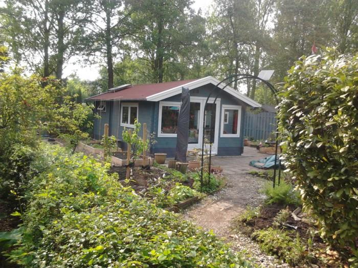 Gartenhaus-streichen
